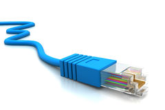 Cavi della rete di computer Immagine Stock