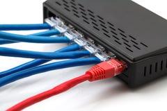 Cavi della rete e di Ethernet di lan Fotografia Stock Libera da Diritti