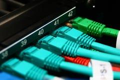 Cavi di Ethernet rossi, verdi e blu Immagini Stock