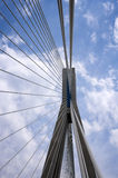 Cavi e pilone di un ponte Immagine Stock Libera da Diritti