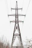 Cavi elettrici ad alta tensione della colonna nella foresta Fotografie Stock