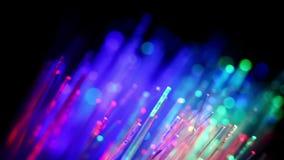 Cavi a fibre ottiche variopinti archivi video