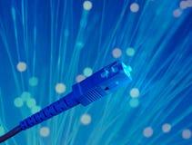 Cavi ottici della rete della fibra Fotografia Stock