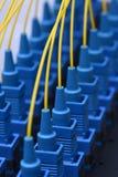 Cavi ottici della rete di giallo della rete della fibra Fotografia Stock Libera da Diritti