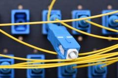 Cavi ottici della rete di giallo della rete della fibra Immagine Stock