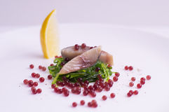 Caviale della barbabietola, pesce dello sgombro ed alga molecolari Fotografie Stock Libere da Diritti