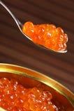 Caviale inscatolato Fotografie Stock