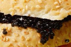 Caviale nero immagini stock libere da diritti