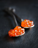 Caviale rosso in cucchiaio Immagine Stock Libera da Diritti