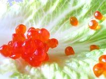 Caviar. Clustred caviar sit on a leaf Stock Image