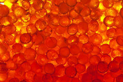 Caviar. Background with red caviar for your design Royalty Free Stock Photography
