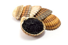 Caviar. Shot of caviar isolated on white background Stock Photography
