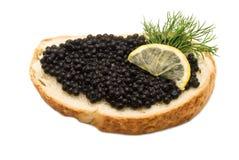 Caviar Imagens de Stock Royalty Free