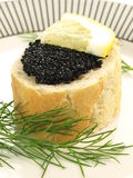 Caviar appetizer, closeup Royalty Free Stock Photo