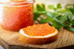Caviar appetizers - salmon roe on the bread stock photos