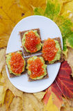 Caviar And Avocado Appetizer. Grain bread with avocado paste and red caviar Royalty Free Stock Photo