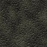 Caviar background texture  Royalty Free Stock Image