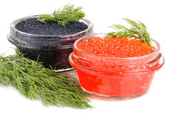 Caviar in cans Royalty Free Stock Image