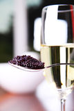 Caviar and champagne Stock Photos