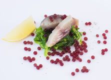 Caviar da beterraba, peixes da cavala e alga moleculars Imagens de Stock Royalty Free