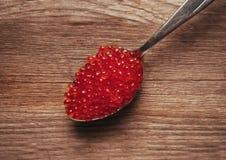 Caviar de los salmones rojos en una cuchara Imagen de archivo libre de regalías
