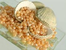 Caviar do banho - cuidado luxuoso do corpo foto de stock royalty free