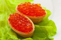 Caviar dos, dispersado en cabezas de un hueso cocidas de la galleta en la ensalada verde de la hoja Fotografía de archivo libre de regalías