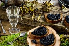 Caviar e vodca pretos Estilo do vintage Fotografia de Stock