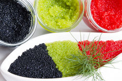 Caviar in a jar. And in a bowl-shaped over royalty free stock photo