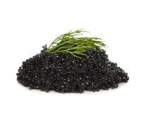 Caviar negro Imagenes de archivo