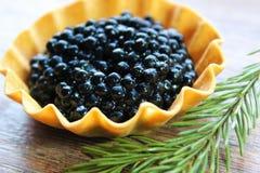 Caviar negro Imagen de archivo