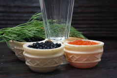 Caviar noir et rouge pour des invités et des amis Caviar noir et rouge pour des invités et des amis Caviar noir et rouge pour les Photographie stock