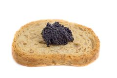 Caviar over piece of toast Royalty Free Stock Photos