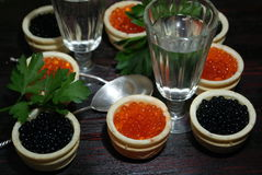 Caviar preto e vermelho para convidados e amigos foto de stock