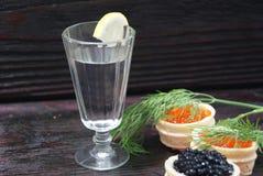 Caviar preto e vermelho para convidados e amigos Imagens de Stock