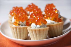 Caviar red fish  with  cream in   tartlets. Stock Photography