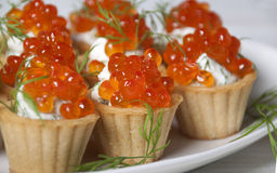 Caviar red fish  with  cream in   tartlets. Royalty Free Stock Image