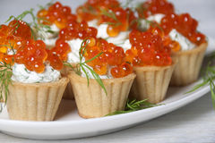 Caviar red fish    in small tartlets. Stock Photo