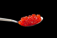 Caviar red spoon Stock Image