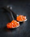 Caviar rojo en cuchara Imagen de archivo libre de regalías