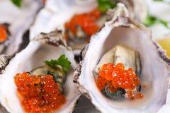Caviar rojo en shelles de ostra fotos de archivo