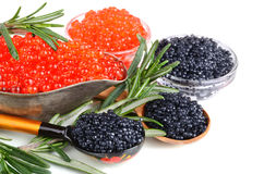 Caviar with rosemary Royalty Free Stock Image