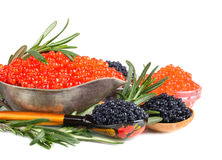 Caviar with rosemary Stock Image