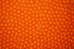 Caviar rouge Image libre de droits