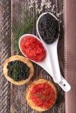 Caviar rouge et noir Photographie stock libre de droits