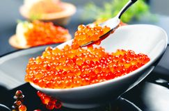 Caviar. Salmon caviar in a bowl. Closeup trout caviar. Gourmet food Royalty Free Stock Images