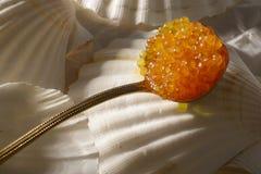 caviar salmon Royalty Free Stock Image