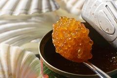 caviar salmon Stock Photos