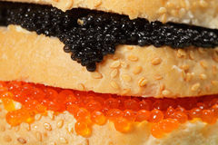 Caviar sandwich closeup Royalty Free Stock Images