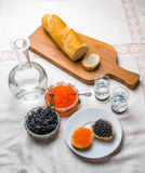 Caviar sandwiches with vodka shots. Black and red caviar sandwiches with vodka shots Stock Photos